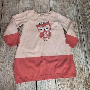 Gymboree Owl Sweater Dress
